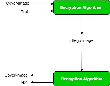 Computer Network | Image Steganography - GeeksforGeeks