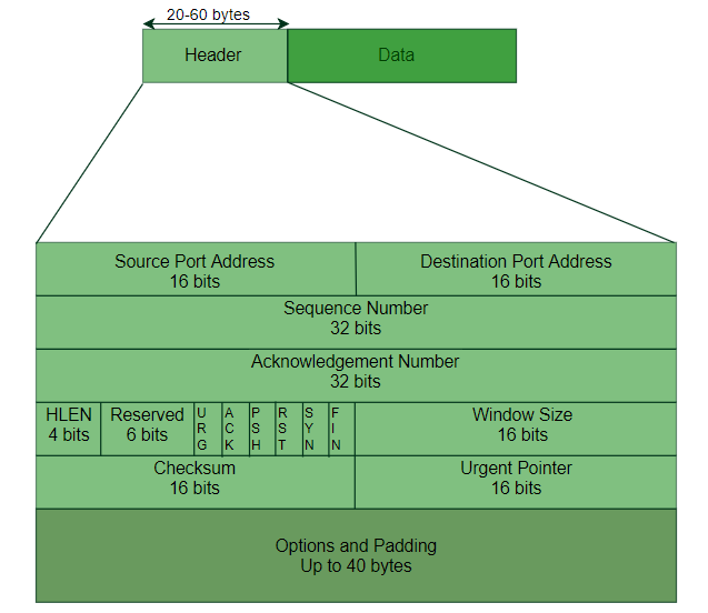 TCP | Services and Segment structure - GeeksforGeeks